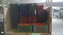 Tomato Load