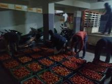 Tomatos unloaded