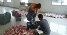 IT Employees packing the Tomatoes